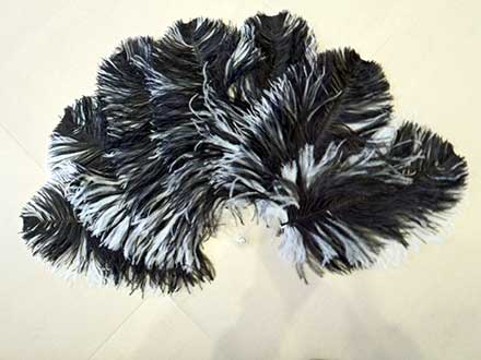 ostrich-feather-fan-black-and-white-transparent-bars-front-side.jpg